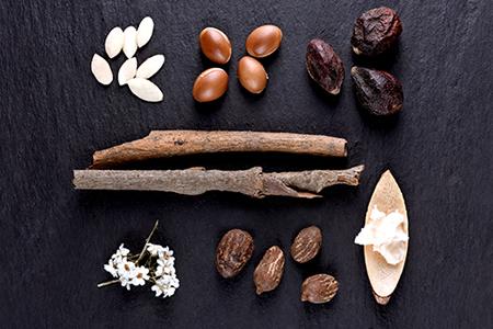 TOP Ingrediencie pre výživu a hydratáciu pokožky